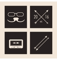 Hipster and vintage style icon design vector image