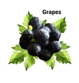 Grapes Low Poly vector image