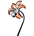 Tiger lilly vector image