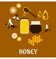 Beekeeping and fresh Honey flat concept vector image vector image