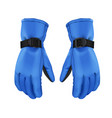 blue winter gloves vector image
