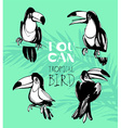 Tropical summerset with toucan birds Ink splatter vector image