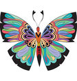 Colored butterflies with patterns vector image