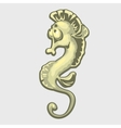Isolated image of a sea horse vector image