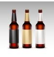 Set of Closed Glass Brown Bottles Dark Beer vector image vector image