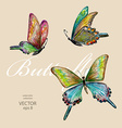 collection of flying butterflies watercolor vector image vector image