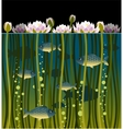 Water lilly and the fish vector image