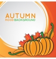 Autumn background with pumpkins vector image vector image