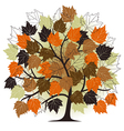 autumn - abstract tree - 2d vector image
