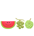 cute fruits watermelon grape custard apple vector image