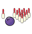 Bowling sport accessories vector image
