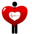 Heart beat vector image