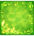 Leaves flowers and feathers on green vector image
