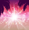 Postcard with seaside sunset view with palmtree vector image