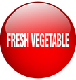 fresh vegetable red round gel isolated push button vector image