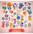 Flowers decorative set of doodle plants vector image