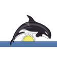 killer whale continuous line vector image
