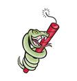 snake rattle dynamite EPS10 vector image