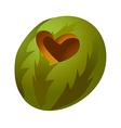icon watermelon vector image vector image