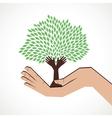 hand tree in hand stock vector image