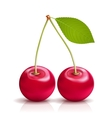 Cherry with Leaf vector image