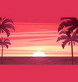 A tropical sunset sunrise with palm trees vector image