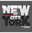 New York city t-shirt vector image