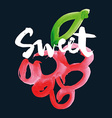 Sweet cherry print for shirts vector image