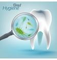 Teeth Hygiene 03 A vector image vector image