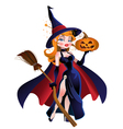beautiful witch in cloak with a pumpkin vector image