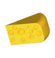cheese with reflection vector image