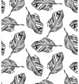 graphic plant palm leaf tropic print black and vector image