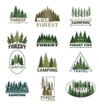 Forest badge set vector image
