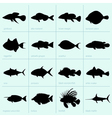 Sea fishes vector image
