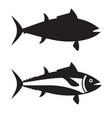 big tuna fish outline icon or logotype vector image