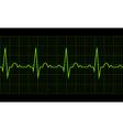 Heart beat Cardiogram Cardiac cycle vector image