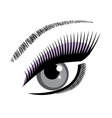 eye blue vector image