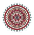 color floral mandala vector image