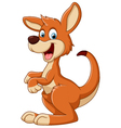cartoon Fun kangaroo vector image