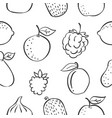pattern fruit various hand draw vector image