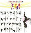pole dance vector image