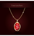 Beautiful gemstone red ruby vector image