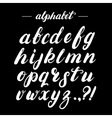 Hand written brush alphabet vector image