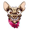 Small angry dog vector image