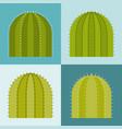 set of cactus flat design vector image