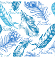 Vintage feather seamless pattern vector image vector image