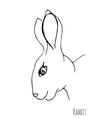 Sketch of a rabbit vector image