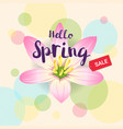 floral spring with pink flower and colorful vector image