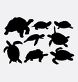 Turtle and tortoise animal silhouettes vector image