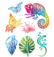 Colored objects of nature vector image